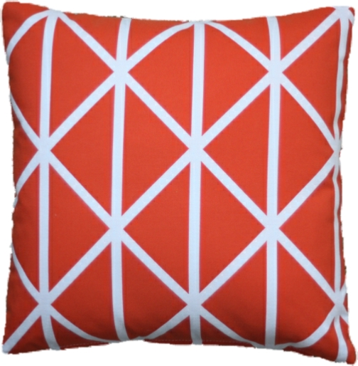 Profile Persimmon Cushion